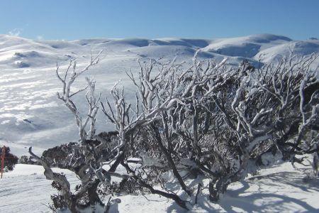 Skiing_2012_139.jpg