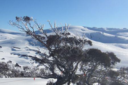 Skiing_2012_140.jpg